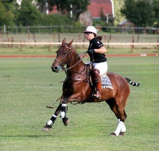 oste-eau-consultation-sport-polo