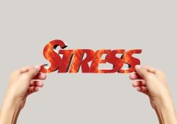 oste-eau-formation-stress